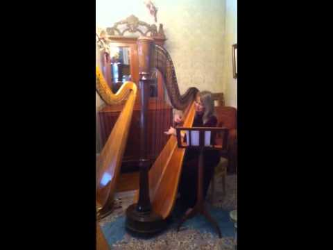 Playing a lovely Welsh lullaby, Suo Gan, in my harp studio on a pedal harp.  Cat twins Hamish and Angus visit briefly--they love to listen!