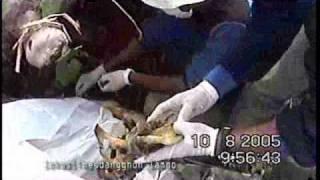 Kisah Pencari Mayat Korban Gempa Bumi Dan Tsunami Aceh 26 Des 2004 Part 2 Of 4