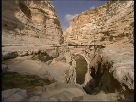 מצוק הצינים - שמורת טבע מדהימה בנגב