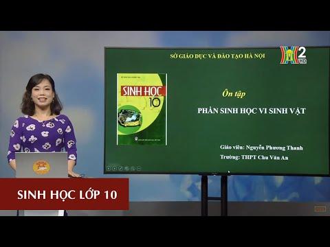 MÔN SINH HỌC - LỚP 10 | ÔN TẬP PHẦN VI SINH VẬT | 13H30 NGÀY 25.04.2020 | HANOITV