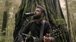 Passenger | Survivors (Acoustic Live from Jedediah Smith Redwood State Park, OR)