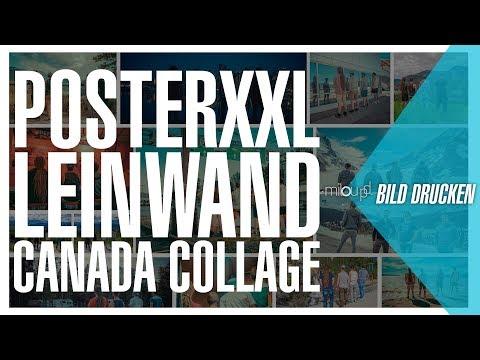 PosterXXL Leinwanddruck | Milou PD Bild drucken