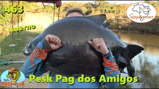 Grandes Tambas no Inverno do Pesk Pag dos Amigos - Fishingtur na TV 463