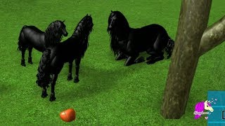 Friesian - Lets Play Roblox Horse Heart Online Horses Game Play Video