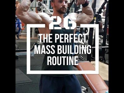 Built by Science #26 - Der perfekte Trainingsplan für maximalen Muskelaufbau