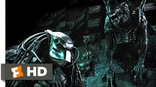 AVP: Alien Vs. Predator (2004)   Marking The Hunter Scene (35) | Movieclips