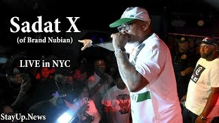 Sadat X (of Brand Nubian) - Punks Jump Up to Get Beat Down/All for One [LIVE in NYC]