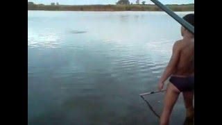 платная рыбалка в кбр 2016