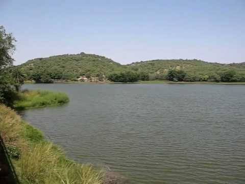 Ranthambore video