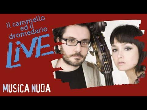 , title : 'Musica Nuda - il cammello ed il dromedario su Arté'