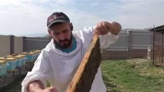 Расширяю пчелосемьи в апреле вощиной , а сушь оставляю на май 6.04.2019