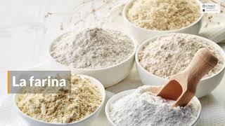 I cereali, un pilastro nella nostra alimentazione