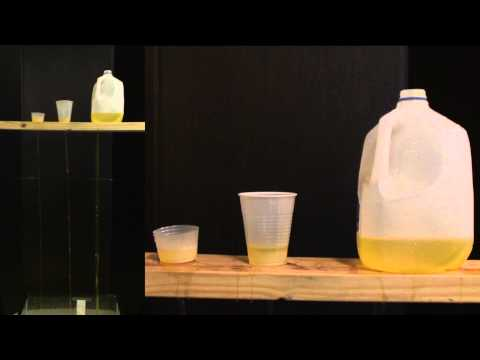 Water Experiment 1