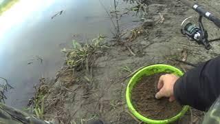 Рыбалка в рамонском районе