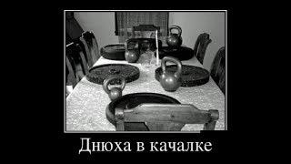 Смешные демотиваторы недели. Непроходимый квест. Новые Русские демотиваторы.