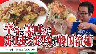 【湖国のグルメ】韓国惣菜とんがら【癖になる旨辛ホルモンポッカ定食&韓国冷麺】