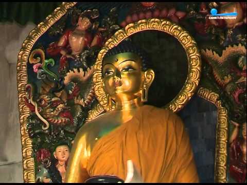 Настоятель прихода храма покрова пресвятой богородицы