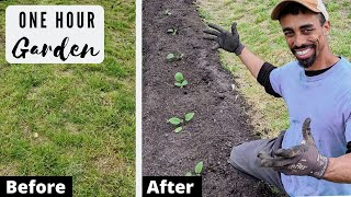 FASTEST way to start GROWING FOOD NOW | From GRASS to GARDEN in ONE HOUR