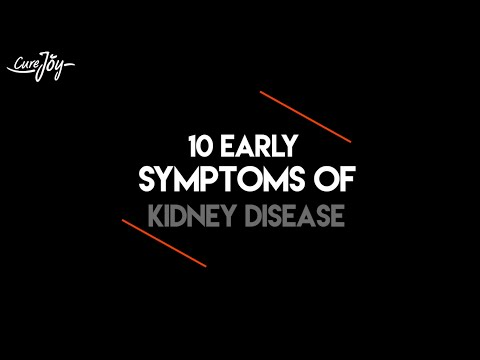 Video 10 Early Symptoms of Kidney Disease and How to Keep Your Kidneys Healthy