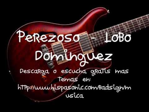 Perezoso - Lobo Dominguez