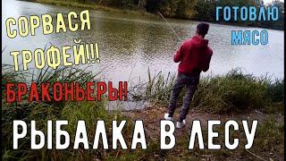 Рыбалка в лесу. Крупный сошел. Нарвался на сети!