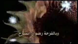 أباذر الحلواجي: للمعالي عالي