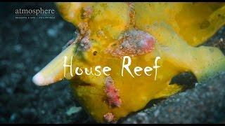 Atmosphere House Reef