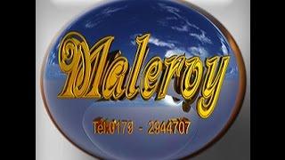 Malerbetrieb Roy Müller - Maleroy