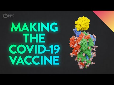 How the COVID-19 Vaccine was Created