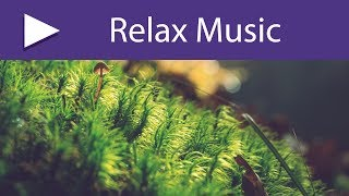 Meditation Rhythm: 8 HOURS Relaxation Songs and Spiritual Healing Music with Sounds of Nature