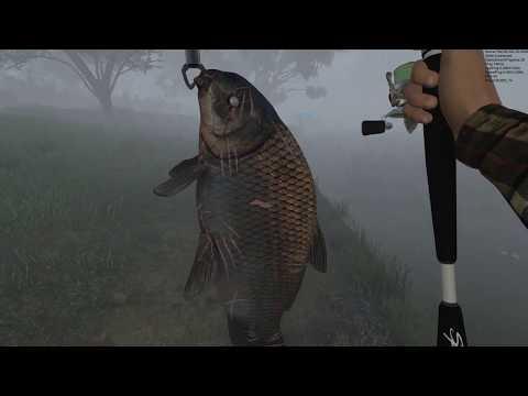 FishingPlanet# Малоротый Буффало Бешеный Глаз