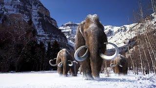 The Mammoth movie # 10000 BC