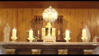 preview picture of video 'Adoration du jeudi 8 janvier 2015'
