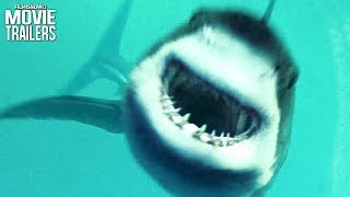 Sharks Attack In Open Water 3 Cage Dive Trailer