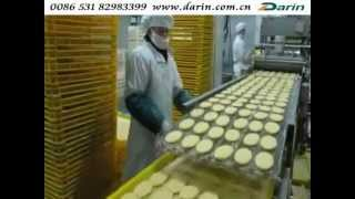 Hamburger Patty Processing Line _ www.darin.com.cn