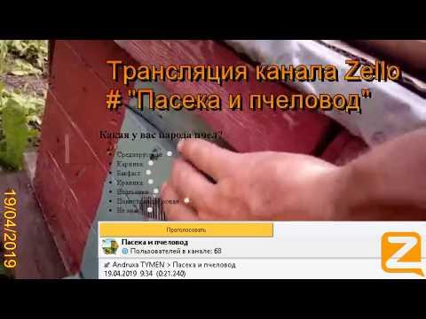 """Трансляция канала Zello """"Пасека и пчеловод"""". (Обзор за день) 19/04/2019"""