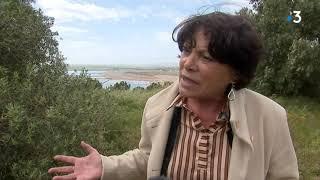 Michèle Rivasi, députée européenne EELV en campagne sur le site de Malvési