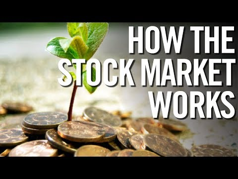 STOCK MARKET FOR DUMMIES 📈 How The Stock Market Works