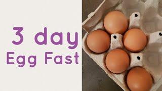3 day egg fast   Kick start ketosis  