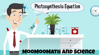 Word equation for photosynthesis