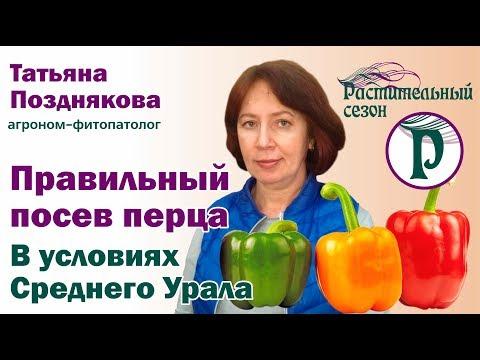 Правильный посев перца. Средний Урал. Советы агронома Татьяны Поздняковой