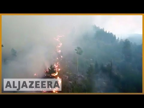 🇸🇪 Sweden wildfires: Worst drought in 74 years | Al Jazeera English