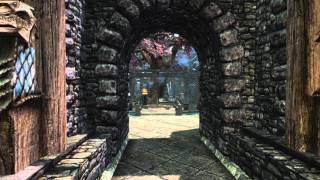 Skyrim - Demonstração do mod City Forest and Landscape V2 trees