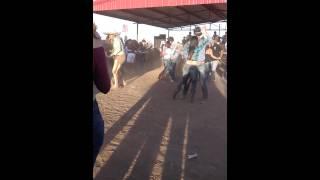 Los Reveldes Del Norte... Coleadero en Hereford TX