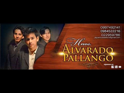 Pasillo Tú y Yo - Hnos. Alvarado Pallango