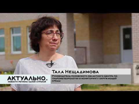 Актуально Псков / 15.07.2020