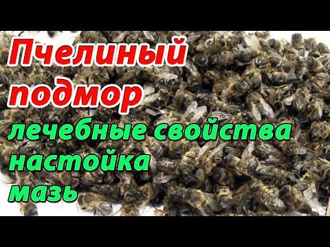 Пчелиный подмор. Настойка подмора. Мазь из подмора. Применение пчелиного подмора в народной медицине