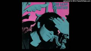 Steve Kilbey - Pretty Ugly Pretty Sad