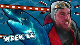 Shock Encounter With A Shark. | Ross Edgley's Great British Swim: E14