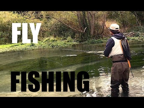 Video che pesca su una montagna grayling Altai